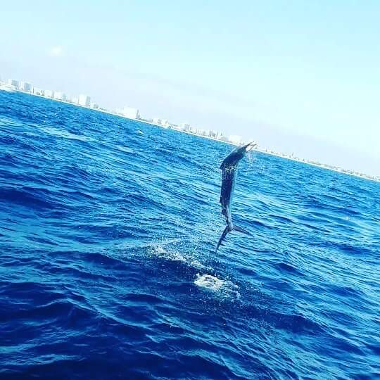 Call Today for the Most Experienced Riviera Beach Fishing Charters